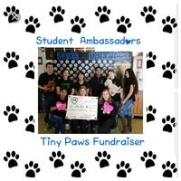 Alden-Hebron Student Ambassadors Raise Donations for Tiny Paws Animal Rescue